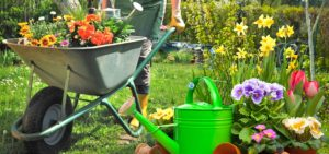 Gardening tools, gardening supplies